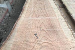 Douglas planke 2