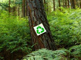 plankebord i genbrugstræ